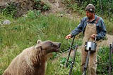 "A ""Must See"" for Alaskan Animal Lovers"